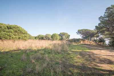 Two plots with sea views not far from Barcelona